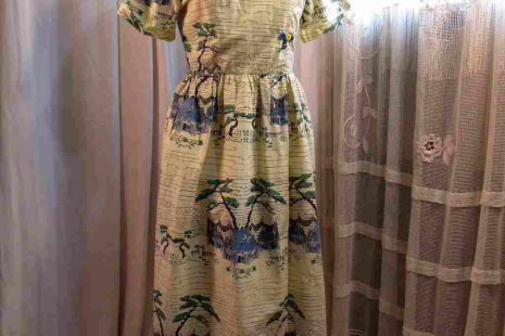 50s Novelty print Cotton Day Dress Asian country Vintage Pastoral